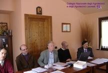 Ancona - Assemblea annuale degli iscritti all'Albo / 10 Aprile 2010