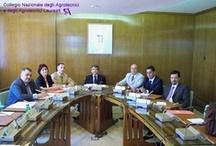Il Comitato Amministratore della Cassa di previdenza degli Agrotecnici approva il bilancio 2008 / Roma, 18 Giugno 2009
