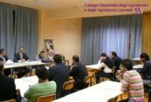 Bari - Assemblea dei Bilanci degli iscritti al Collegio degli Agrotecnici / 28 Aprile 2010
