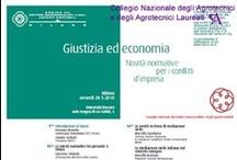 Convegno all'Università Bocconi su Giustizia ed Economia / Organizzato dai Dottori Commercialisti.  Milano, 28 Maggio 2010