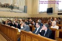 Seminario al CNEL sulla riforma del PAC e sullo stato di attuazione dei PSR / Roma, 13 Luglio 2010