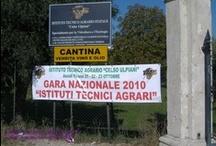 Ascoli Piceno - Gara Nazionale di Agraria 2010 / 21 - 22 - 23 Ottobre 2010