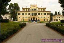 """Una scuola per la nostra Terra: 50 anni dell'Istituto """"Serafino Salvati"""" / Monte Roberto (AN), 9 Ottobre 2010"""