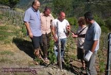 Incontro annuale del Consiglio degli Agrotecnici e degli Agrotecnici laureati di Torino-Aosta / 25 Luglio 2009