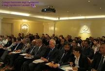 Assemblea dei Presidenti (si decide per gli accorpamenti fra Albi) / Roma, 5 Maggio 2012