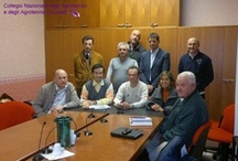 Si insedia il nuovo Collegio interprovinciale di Forlì/Cesena - Rimini / 17 Ottobre 2011