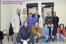 Molfetta (BA) - Incontro di coordinamento staff FONDAGRI regione Puglia / 18 Ottobre 2011