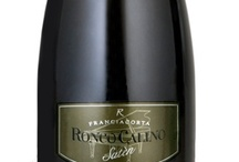 Satèn Franciacorta Flavour / All the #flavours and #bouquet of this #Franciacorta #wine.
