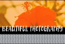 Beautiful Photography / a collection of favourite images. Beautiful photography