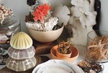 Beach-Inspired Decor / by Real Simple