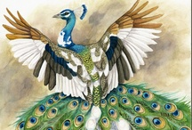 Peacock Painting Inspiration  / Wonderful paintings to help inspire my latest project.  / by Laura