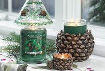 Balsam & Cedar / by Yankee Candle: Scented Candles | Home & Car Air Fresheners, Fragrances & Decor