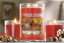 Fall Fragrances 2015 / Meet our new & fragrances & classic favorites for the upcoming fall season  / by Yankee Candle