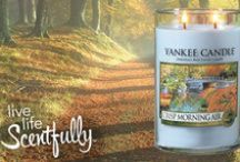Crisp Morning Air / With the crisp scents of eucalyptus and mint layered beneath soft pear and sage, it's like that first deep breath of bright, clean air on a morning far, far away. / by Yankee Candle: Scented Candles | Home & Car Air Fresheners, Fragrances & Decor