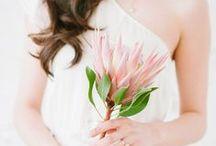 #Wedding / Vai casar? A gente te ajuda a planejar tudo: modelos de vestidos, ideias de decoração, lembrancinha, lua de mel, menu, bolos, mini wedding, músicas pra valsa, dia da noiva...