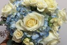 Norton's Weddings- Blue and White / Bridal bouquet and Bridesmaid bouquets