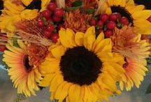 Norton's Weddings- Fall yellow, orange, red / Fall wedding featuring dramatic sunflowers, fall mums, red hypericum and dried wheat.