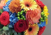 Norton's Weddings- Bright Fall Colors / Fall wedding with bright fall colors.