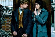 Fantastic Beasts / Fantastic Beasts and Where to Find Them