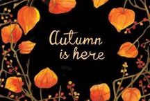 Autumn / All the wonders of autumn. Fall flowers, beautiful landscapes, rustling colorful leaves, and the scents of the season.
