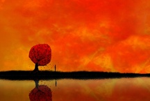 Orange ! / une séléction craquante d'objets orange !