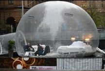 2013 Winter Sleepout Bubble Launch / Did you see our bubble at Martin Place?