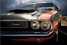 Muscle Car / by Filippo Mura