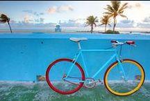 Cycling / by Filippo Mura