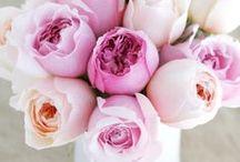 FLOWERS / une brassée de fleurs
