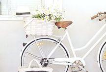 bike/flower