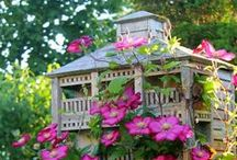 Bird houses, cages, and feeders / by Joy Lay