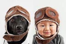 Kæledyr (pets) / Dyr i familien (pets in the family)