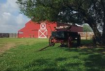 Bauer Ranch / Weddings and Special Events