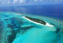 Maldivler de En İyi 3 Dalış Oteli / Maldivlerde dalış keyfi için en iyi 3 oteli sizin için seçtik...