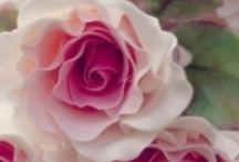 Hage gleder / Blomster, trær, hage gleder