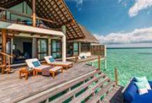 Haydi Maldivlere / Her şeyi bırakıp Maldivlere gitmek için 8 neden!!! / The 8 reasons why you should definitelly visit maldives!!!