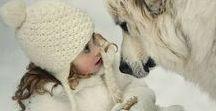 Állatok és barátaik