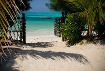 Travel: Beaches / Beach | travel