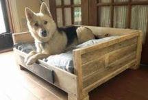 Home: Dog beds / Dog beds | futtons