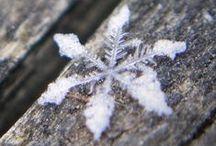 zima * winter *