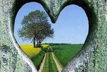 coeur, sous toutes ses formes! / Cœurs sous tout les aspects ! / by coty mont