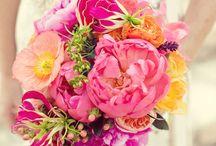 Kukkia <3