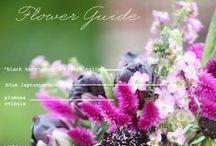 Цветочный гид & DIY Букеты