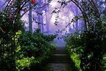 Secret garden / Under the lilac tree...