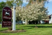 Whyte Horse Winery / Information about Whyte Horse Winery and our Indiana-made award winning wines.