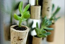 DIY Corks and Crafts / DIY crafts and decor you can make yourself by recycling wine bottles, corks, or other items.