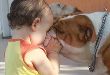 Those little ones / Kids an Pets ! Adorable creatures ! Love for the little ones !