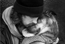 LOVING YOUR DOG SO MUCH / When you love your dog so much that you will give your life for him or her