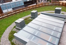 Project: Hawthorns School, architect: Squires and Brown