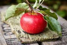 Lovely Fruits